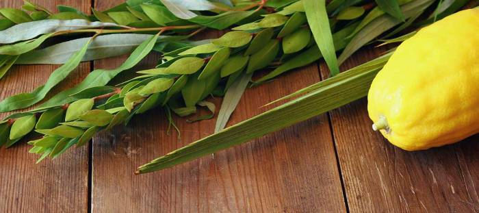 sukkot-holiday-feature